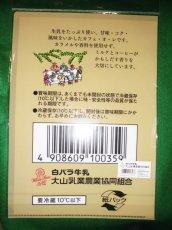 画像2: 白バラ牛乳『A4クリアファイル』(各種) (2)