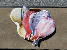 画像4: 【グロいけど...売れています】キャビネット『魚ケース』(各種) (4)