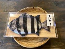 画像2: 【取扱店限定ハンドメイド雑貨】石鯛ケース(チャック仕様) (2)