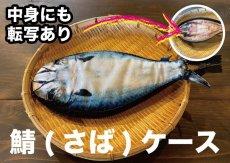 画像1: 【取扱店限定ハンドメイド雑貨】鯖(さば)ケース(チャック仕様) (1)