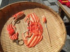 画像4: 【面白魚介類グッズ】リアルカニ爪付『耳かき』 (4)