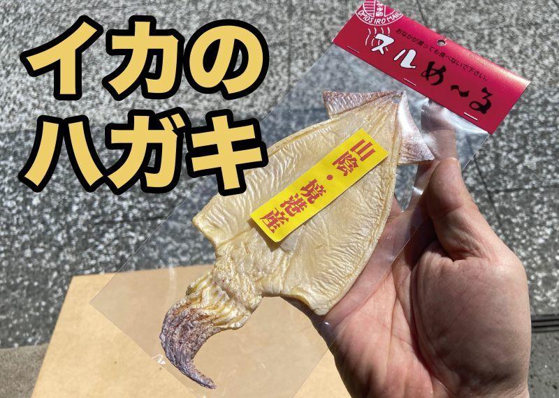 画像1: 【食べられませんw】リアルなイカのハガキ(ラバー製) (1)