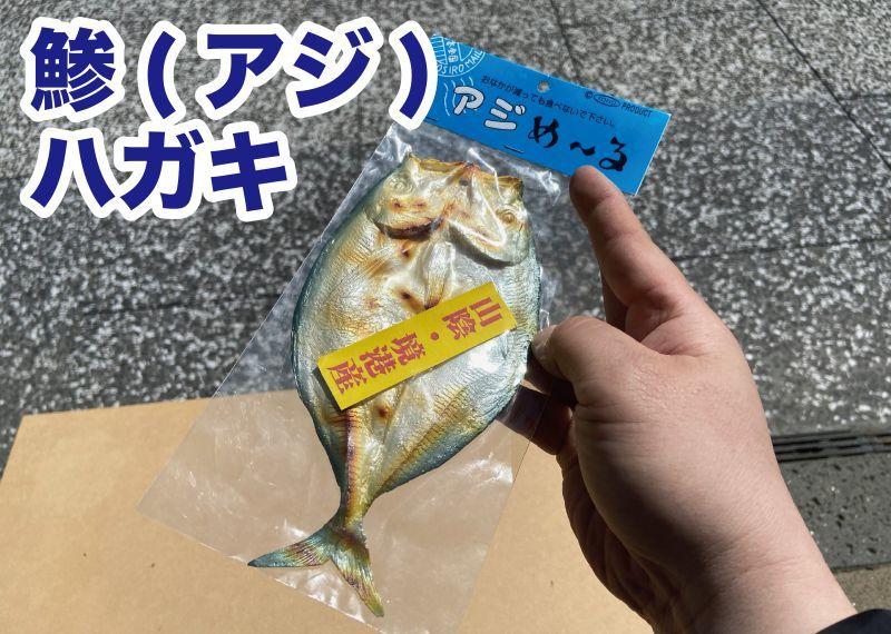 画像1: 【食べられませんw】リアルなアジのハガキ(ラバー製) (1)