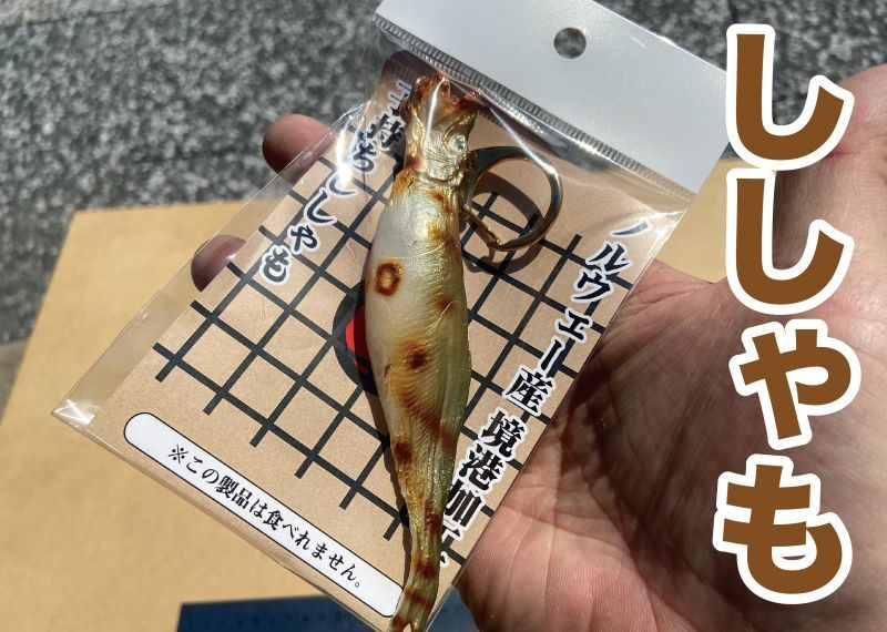 画像1: 【食べられませんw】リアルなししゃものキーホルダー (1)