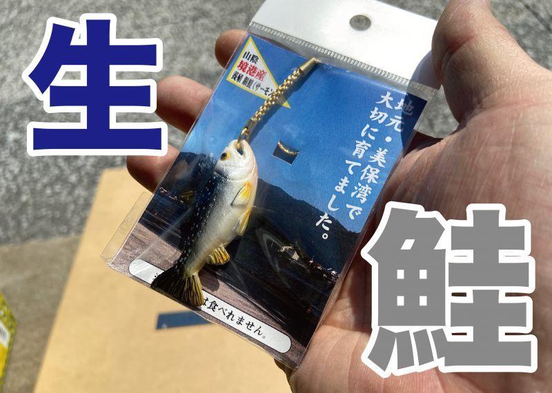 画像1: 【食べられませんw】リアルな鮭(生)のストラップ (1)