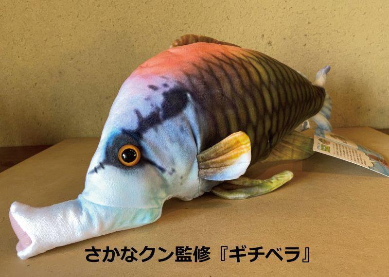 画像1: あるだけ特価【さかなクン監修】ギチベラ『ぬいぐるみ』 (1)